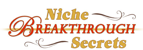 niche breakthrough secrets vip day